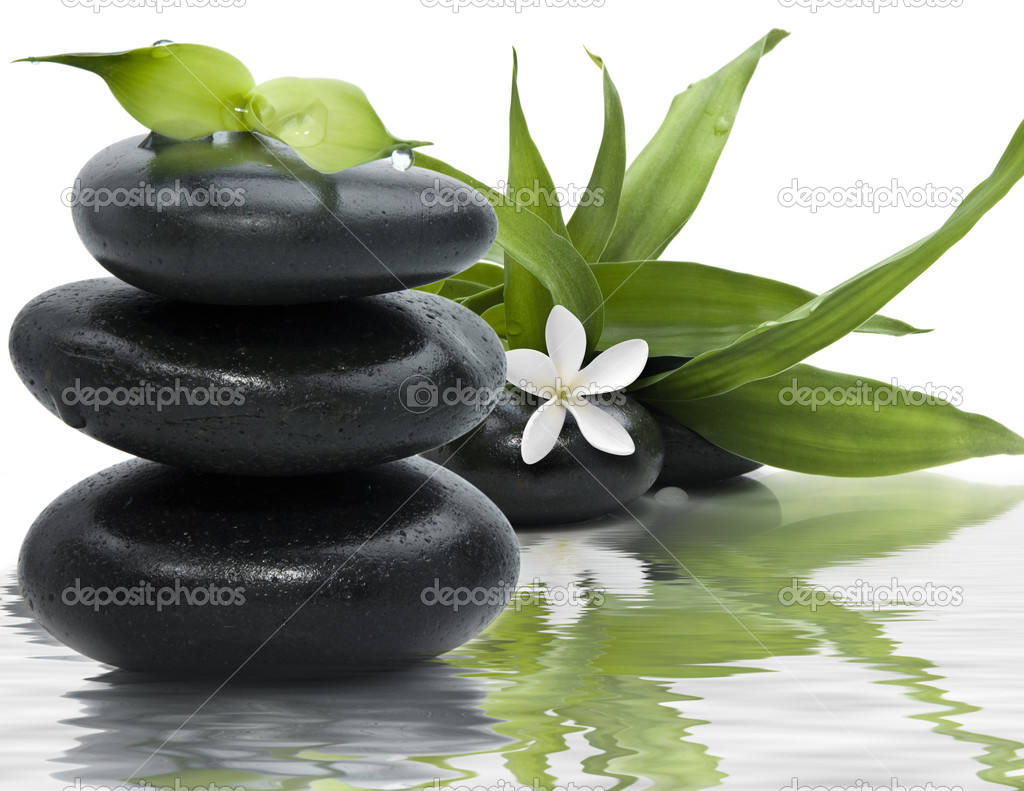 Spa still life with black stones and bamboo leafs in the water