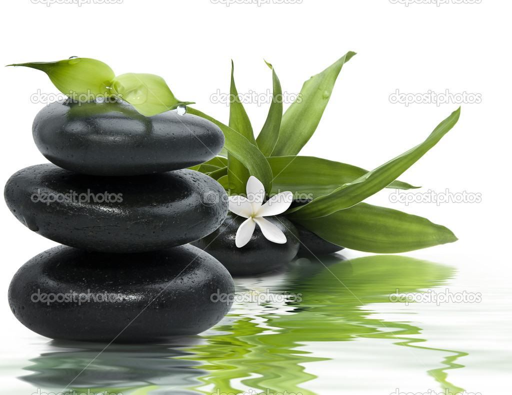 Zen stones with leaves and white flower in water