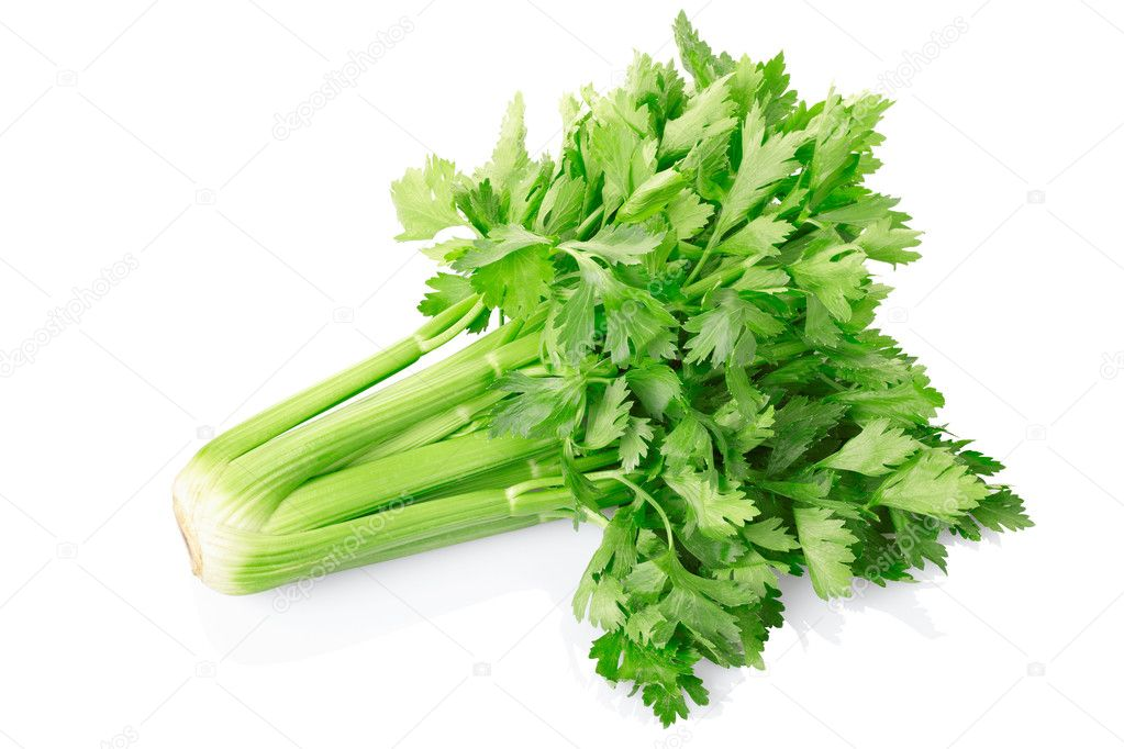 Green celery isolated on white
