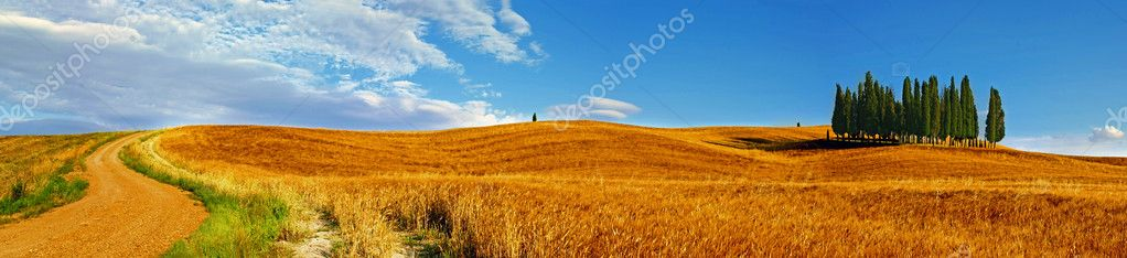 Val' d' Orcia, landscape - Sweet Tuscany, italy