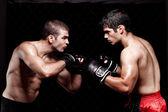 Fényképek a harc előtt a vegyes harcművészek