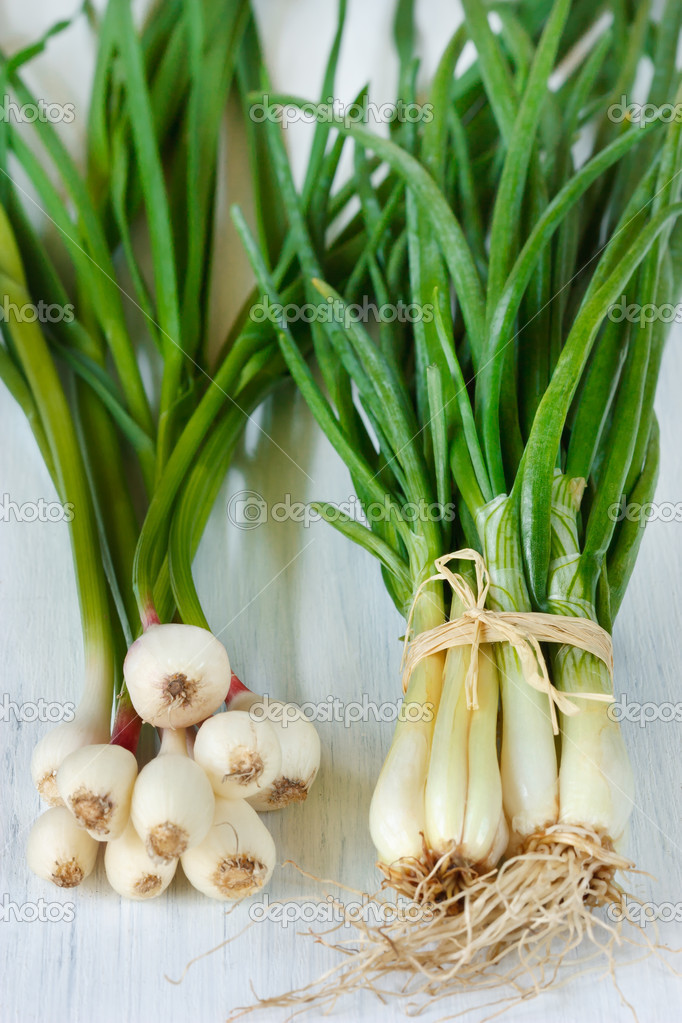 Young onion and garlic.