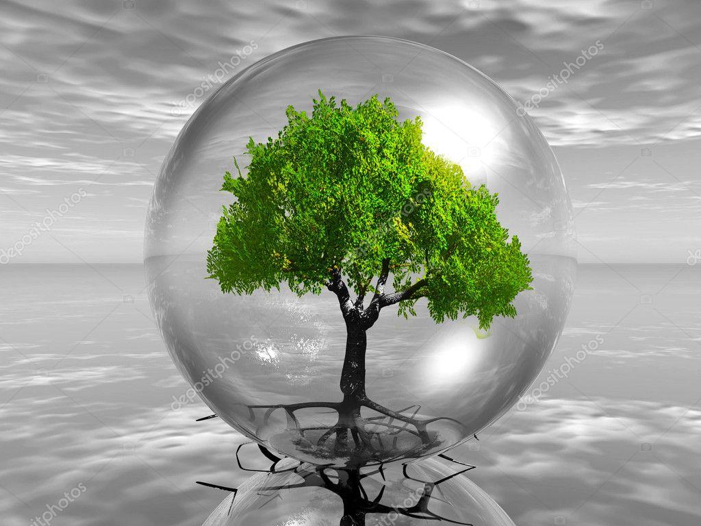 Картинки деревья в пузырях