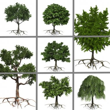 Collage of trees stock vector