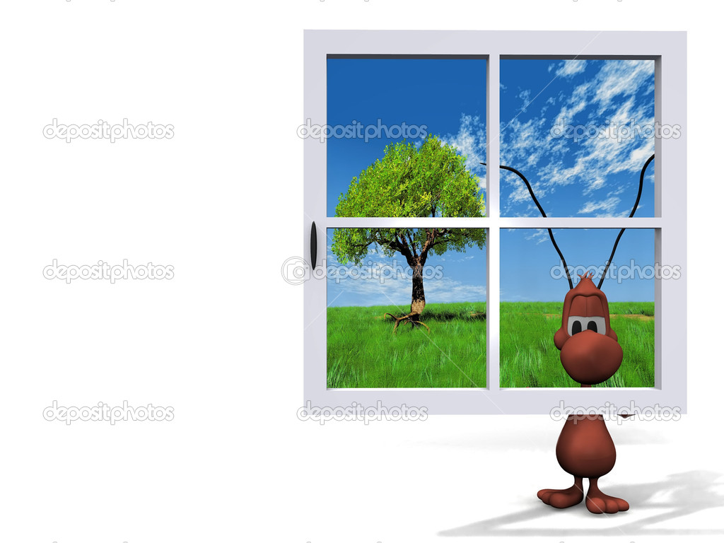 Ant and window
