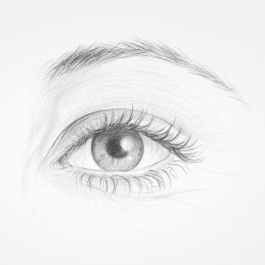 Realistic sketch of beautiful woman eye stock vector