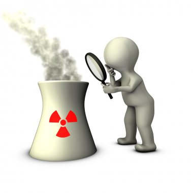 Audit of nuclear power plant