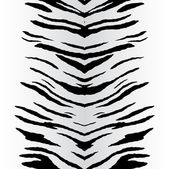 Fotografie Zebra Stripes Vector