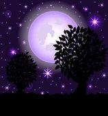 Vektorové ilustrace noční scény