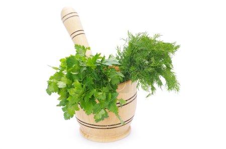 Herbs on white