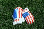 Boxerské rukavice na trávě
