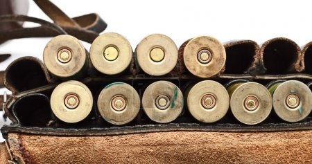 Vintage Ammunition Belt