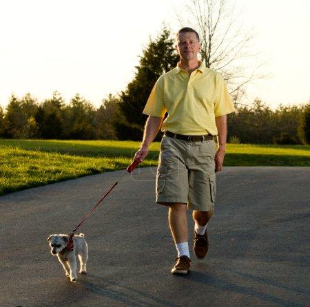 Active senior walking small dog