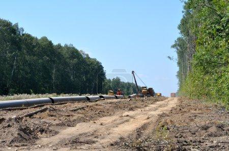 Photo pour Construction d'un gazoduc en forêt - image libre de droit