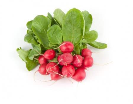 Photo for Fresh radishes on a white background - Royalty Free Image