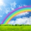 Rainbow in the blue sky over a glade...