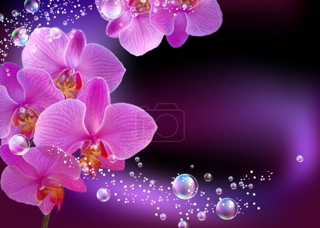 Photo pour Orchidée et bulles - image libre de droit