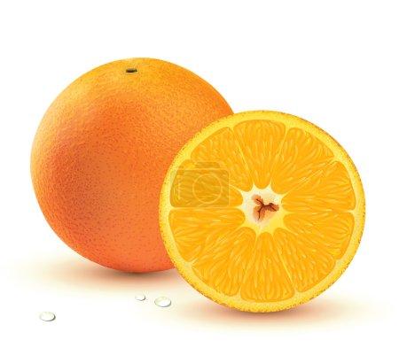 Photo pour Illustration d'une orange juteuse frais isolé sur fond blanc. - image libre de droit
