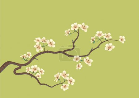 Illustration for This is the vector illustration of a flowered sakura, japanese cherry tree - Royalty Free Image