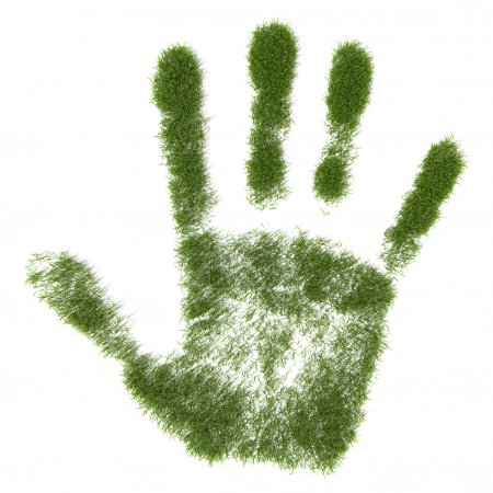 Photo pour Herbe verte croissant empreinte de main - image libre de droit