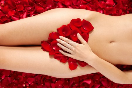 Beautiful body of woman against petals of red roses