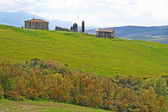 Italy. Val D'Orcia valley. Tuscany landscape