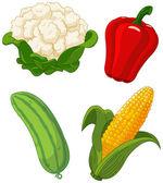 Set of vegetables2