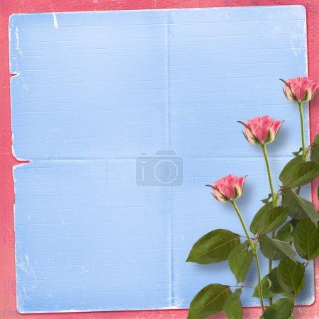 Photo pour Grunge fond pour féliciter avec belle rose - image libre de droit
