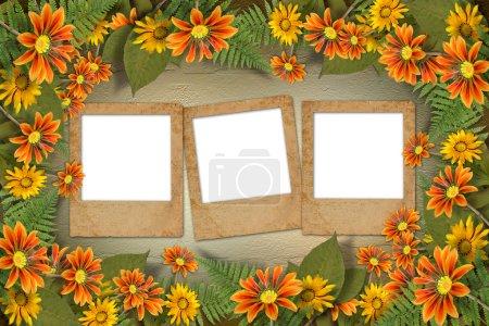 Herbarium von Blumen und Blättern auf dem floralen Hintergrund mit