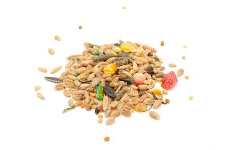 Photo pour Un tas de mélange d'aliments de hamster (graines et céréales), isolé sur fond blanc - image libre de droit