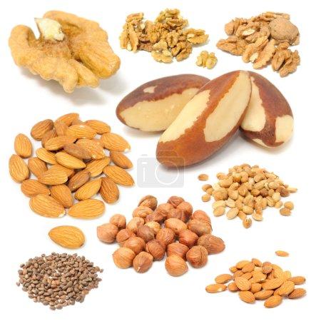 Set of Nuts (Walnuts, Brazil Nuts, Almonds, Peanuts, Hazelnuts, Pine Nuts
