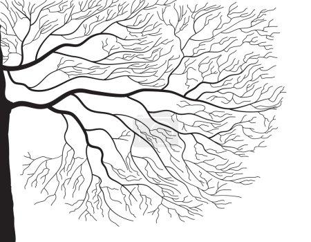 Illustration pour Vecteur noir graphick silhouette og branches d'arbre sur blanc - image libre de droit