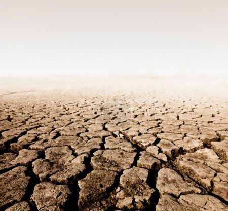 Land with dry cracked ground...