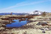 Jarní horská krajina