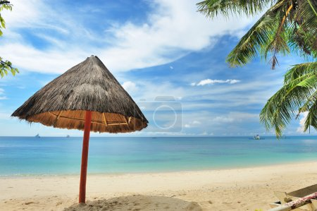 Photo for Beautiful wild beach at remote island, Philippines - Royalty Free Image