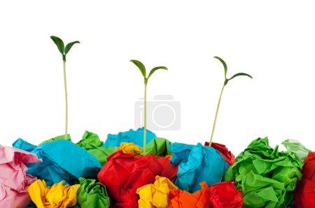 Photo pour Concept avec semis sur blanc de recyclage du papier - image libre de droit