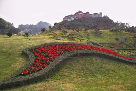 Magnificent bright red flower bed