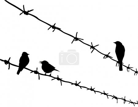 vector silhouette three birds on barbed wire
