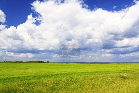 Cloudscape over Green Fields