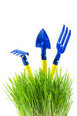 Garden tools in green grass