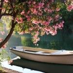 Boat on Ombla river near Rozat, Croatia...