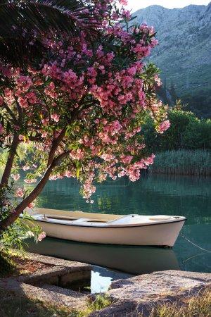 Photo pour Bateau sur la rivière ombla, près de rozat, Croatie - image libre de droit