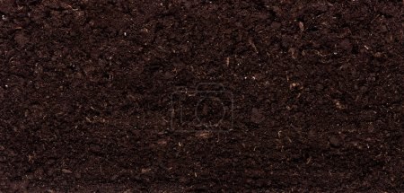 Photo for Close-up of organic soil. Can be used as background. - Royalty Free Image