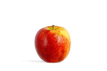 Photo pour Seule une pomme rouge-jaune isolée sur fond blanc - image libre de droit