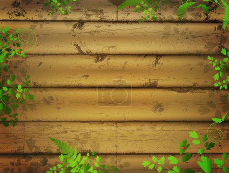 Illustration pour Fond en bois avec feuilles vertes et coccinelles - image libre de droit