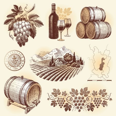 Photo for Hand drawn vector set - wine and winemaking - Royalty Free Image