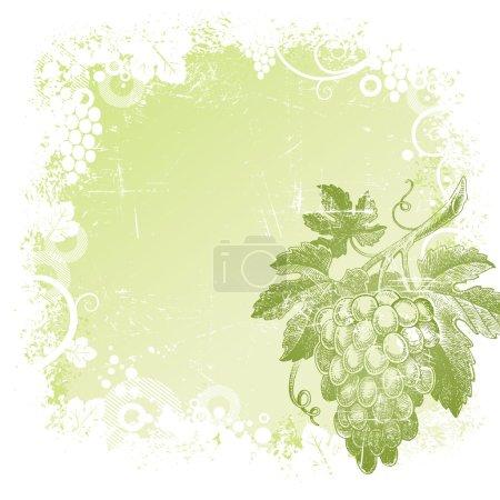 Illustration pour Fond vectoriel Grunge avec un bouquet de raisins dessiné à la main - image libre de droit