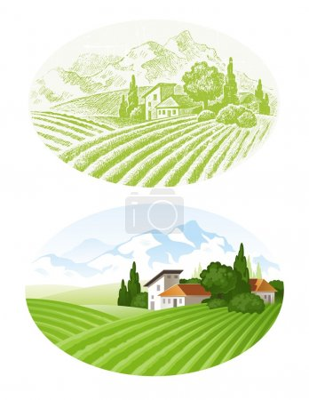 Illustration for Hand drawn vector landscape with agrarian fields, village and mounains - Royalty Free Image