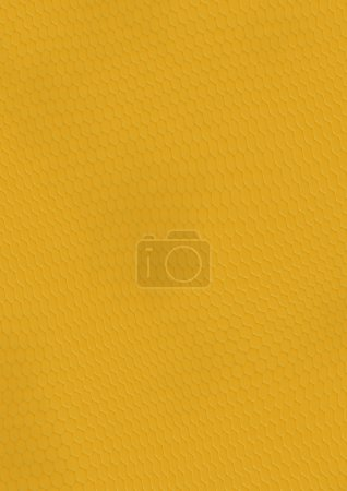 Gold fish texture