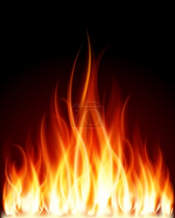 Illustration for Burn flame fire vector background - Royalty Free Image